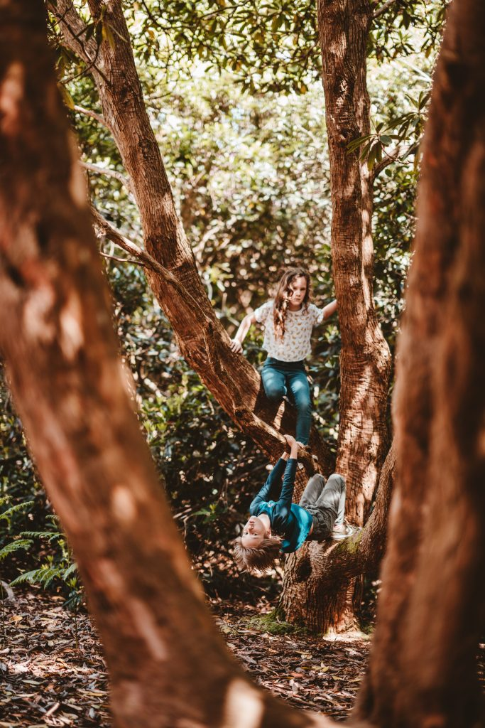 girl and boy playing on tree in the forest